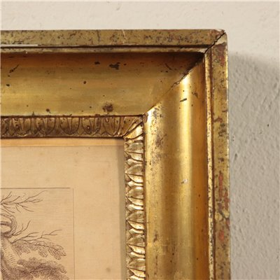 Empire Style Frame Italy 19th Century