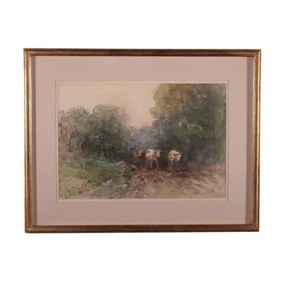 Paolo Sala Watercolour On Paper End 19th Century Early 20th Century